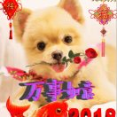 1001_969816338_avatar
