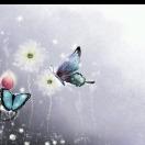 8001_2757098_avatar