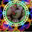 1001_2158449780_avatar