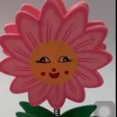 向日葵,未知,来自