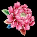 3002_1002353623_avatar