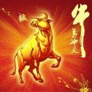 1001_2380540451_avatar