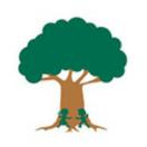 大树王木业18015865322