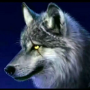 1001_15529677596_avatar