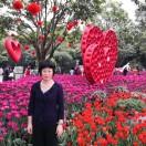 Wendy Zhao 的个人资料图片