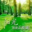 新芽网友017137